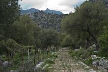 La Calzada Romana