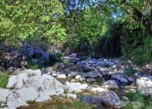 Río Guadalete, lindero norte